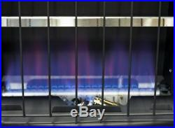 Indoor Natural Gas Heater Wall Mounted Vent Free 30000 BTU Home blue flame